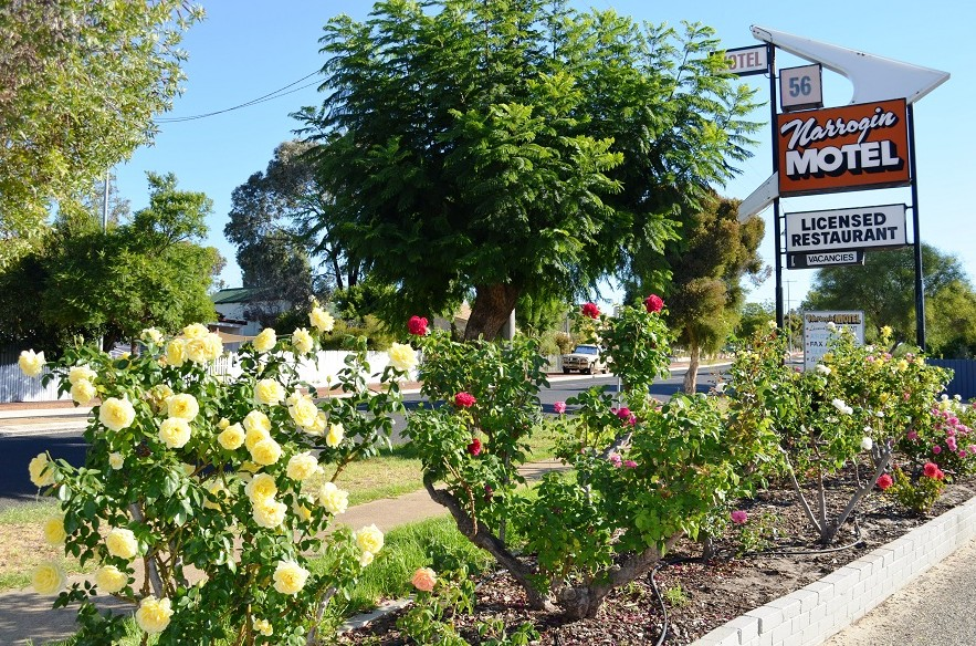 Narrogin Motel