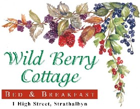 Wild Berry Cottage - SA Accommodation