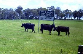 Cluan Homestead - The Managers Residence - SA Accommodation