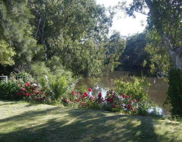 Bidgee Bankside Cottage - SA Accommodation