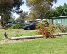 Kyalite Caravan Park - SA Accommodation