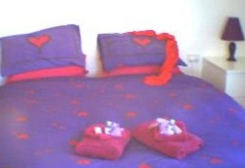 Aloomba Lavender - Accommodation - SA Accommodation