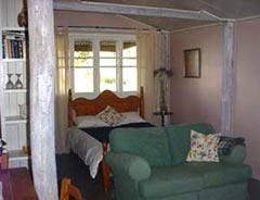 Bunnyconnellen Olive Grove and Vineyard - SA Accommodation
