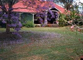 Minmore Farmstay Bed and Breakfast - SA Accommodation
