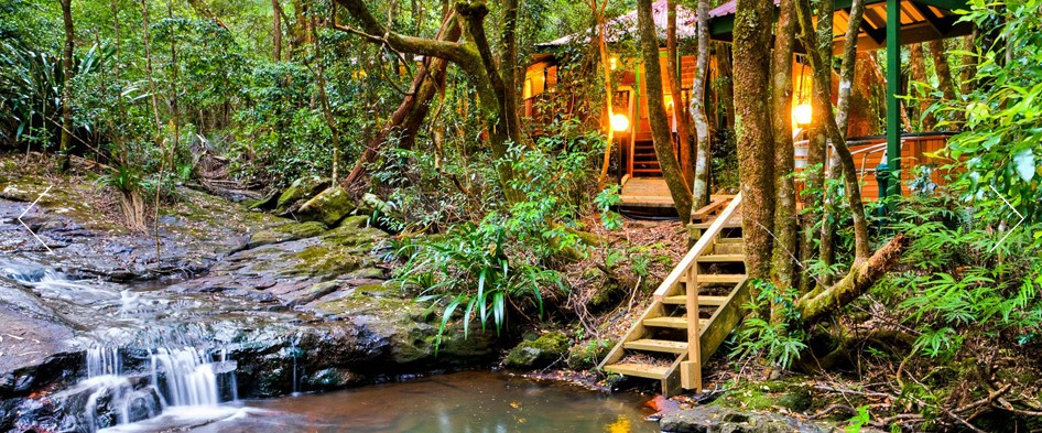 The Mouses House - Rainforest Retreat - SA Accommodation