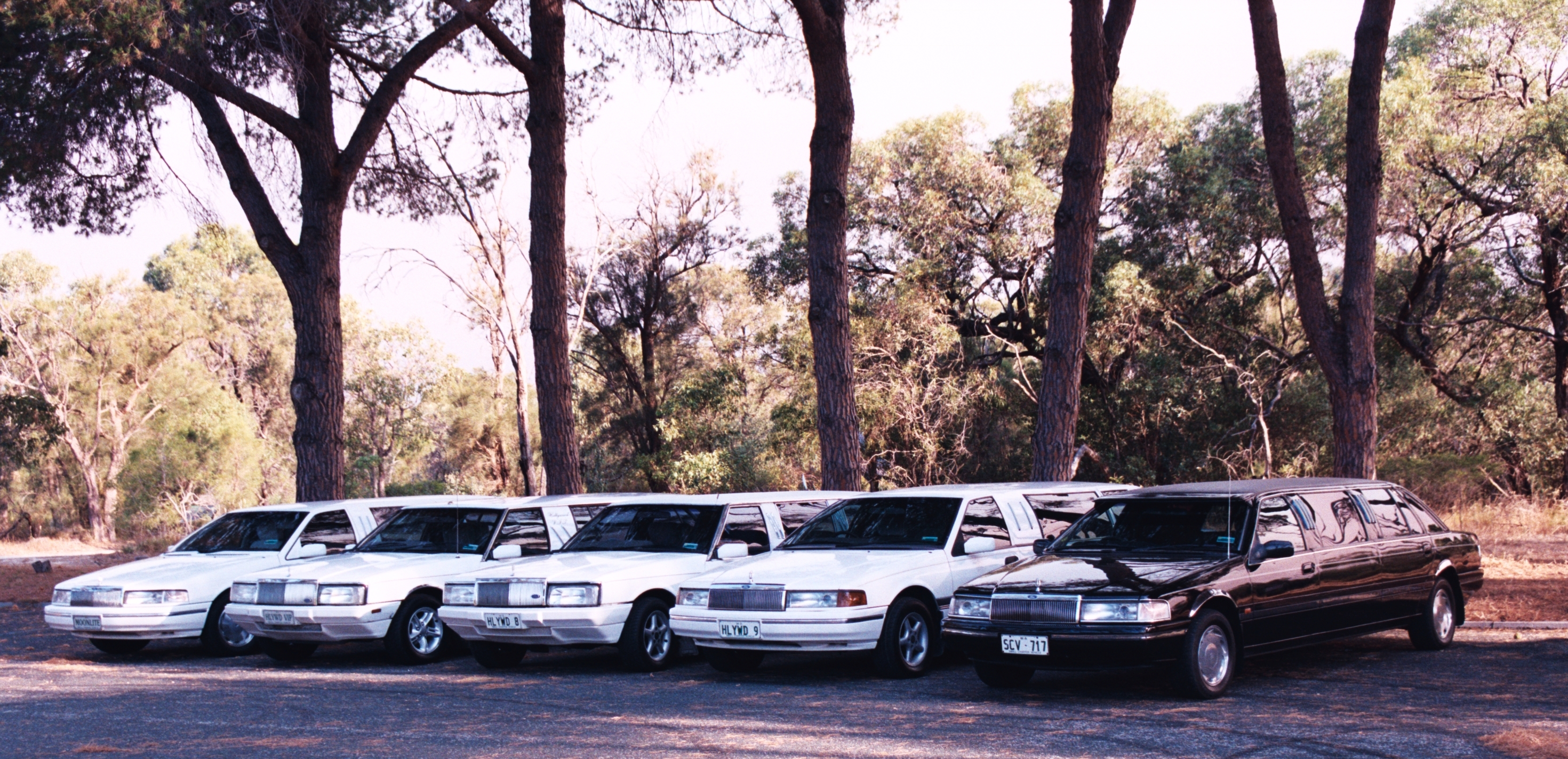 Hollywood VIP Limousines - SA Accommodation
