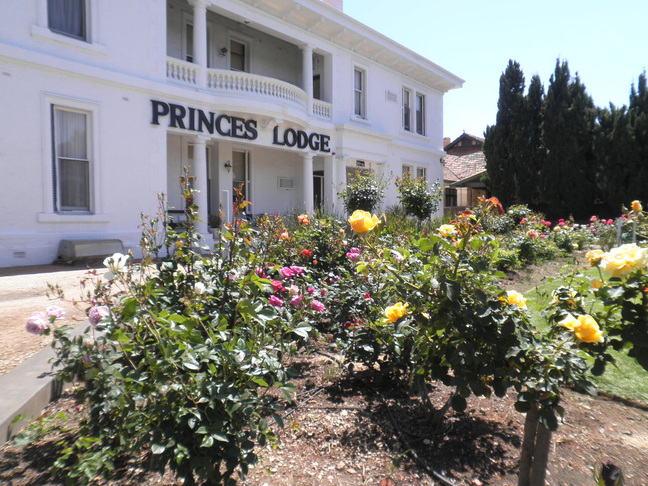 Princes Lodge Motel - SA Accommodation
