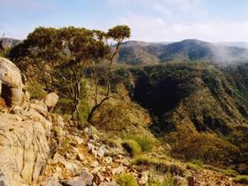 Bendleby Ranges - SA Accommodation
