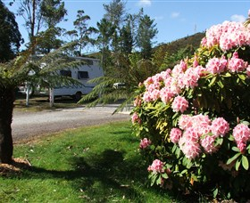 Zeehan Bush Camp  and Caravan Park - SA Accommodation