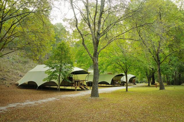 Buchan Caves Reserve - SA Accommodation