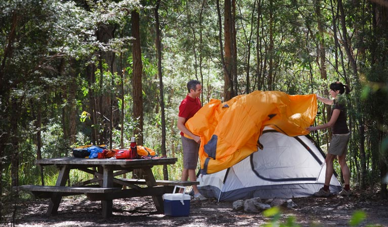Bald Rock campground and picnic area - SA Accommodation