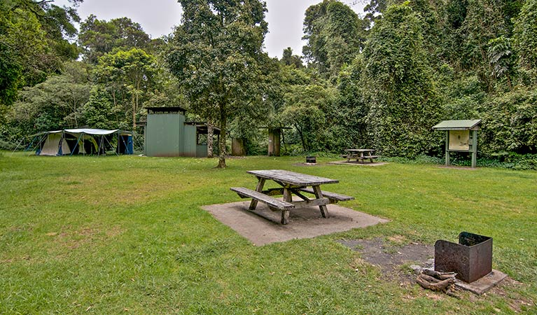 Forest Tops campground - SA Accommodation