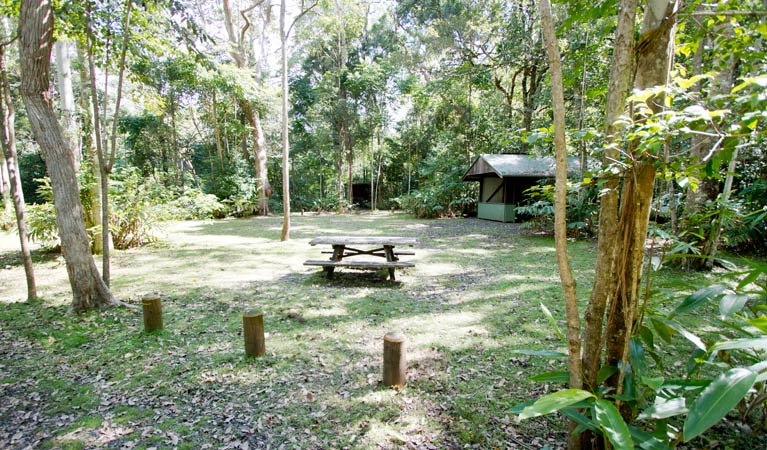Iron Pot Creek campground - SA Accommodation