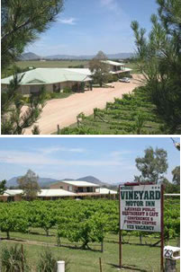 Mudgee Vineyard Motor Inn - SA Accommodation
