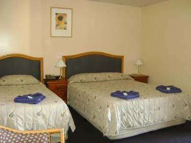 Mudgee Motor Inn - SA Accommodation