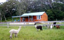 Moorallie Cottage Farm Stay - SA Accommodation