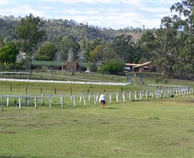 Kellarni Downs Farmstay-Scenic Rim - SA Accommodation