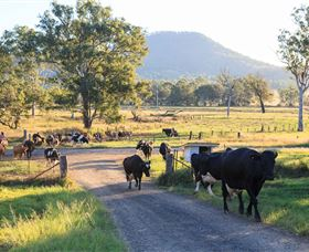 Tommerups Dairy Farmstay - SA Accommodation