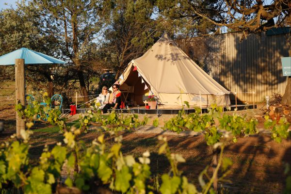 Grapevine Glamping - SA Accommodation