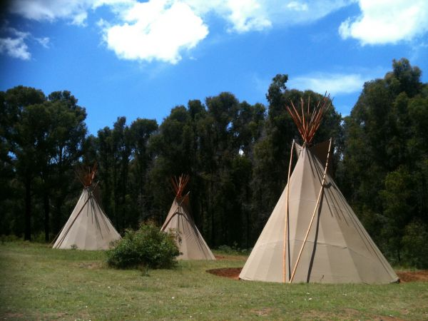 Kinglake Forest Adventures Camp - SA Accommodation