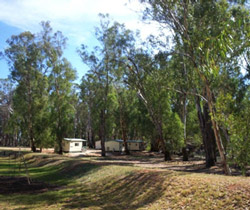 Balranald Caravan Park - SA Accommodation