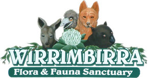 Wirrimbirra Sanctuary - SA Accommodation
