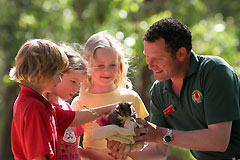 Cleland Wildlife Park - SA Accommodation