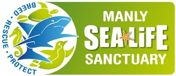 Manly SEA LIFE Sanctuary - SA Accommodation