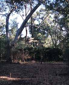 Ghost House Walk Trail Yanchep National Park - SA Accommodation