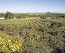 Chapman Valley Scenic Drive - SA Accommodation