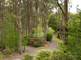 Mount Lofty Botanic Garden - SA Accommodation