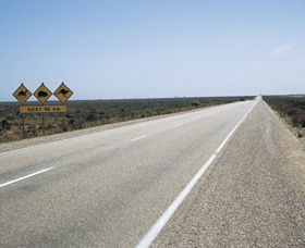 Eyre Highway - SA Accommodation