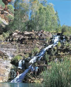 Fortescue Falls - SA Accommodation