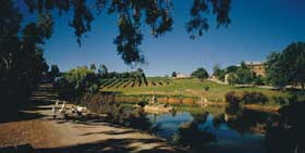 Mount Hurtle Winery home of Geoff Merrill Wines - SA Accommodation