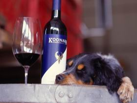 Koonara Wines - SA Accommodation