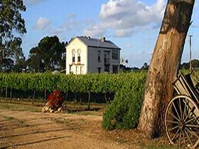 Highbank Vineyards - SA Accommodation