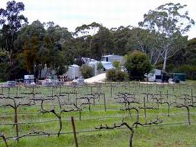 Jeanneret Wines - SA Accommodation