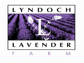 Lyndoch Lavender Farm and Cafe - SA Accommodation