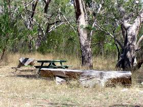 Penola Conservation Park - SA Accommodation