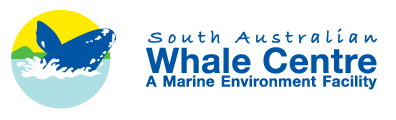South Australian Whale Centre - SA Accommodation