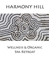 Harmony Hill Wellness and Organic Spa Retreat - SA Accommodation