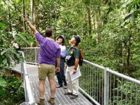 Daintree Discovery Centre - SA Accommodation