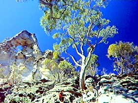Mount Moffatt Section - Carnarvon National Park - SA Accommodation