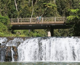 Malanda Falls Conservation Park - SA Accommodation