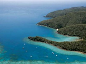 Butterfly Bay - Hook Island - SA Accommodation