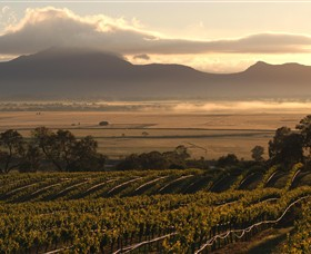 Montara Wines - SA Accommodation