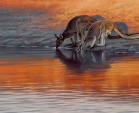 Steve Morvell Wildlife Art - SA Accommodation