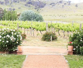 Brindabella Hills Winery - SA Accommodation