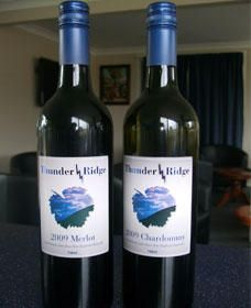 Thunder Ridge Wines - SA Accommodation