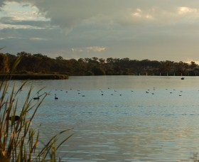 Lake Inverell Reserve - SA Accommodation